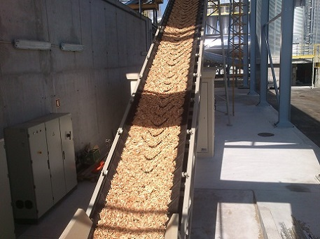 Morillon Wood chip extraction in Portugal